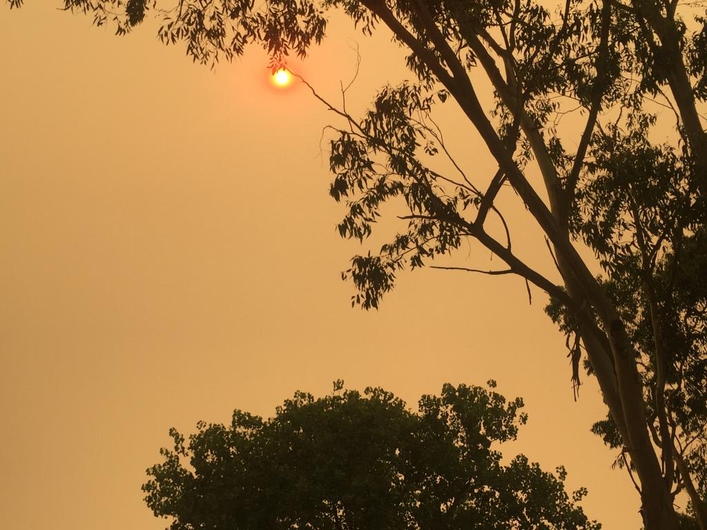 Smoky Sydney Sky
